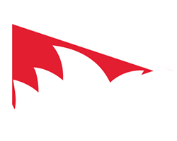 Sydney Swans team flag