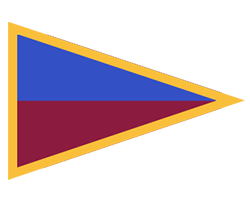 Brisbane Lions Women team flag